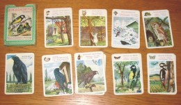 Jeu De Cartes Familles Les Oisaux En Allemand Année 50 + Boîte - Unclassified