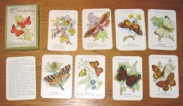 Jeu De Cartes Familles Les Papillons En Allemand Année 50 + Boîte - Playing Cards