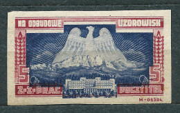 Poland - Post And Telegraph Trade Union - Aid For Reconstruction Of Spa - Label  5 Zl Unused - 1919-1939 République