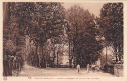 64 -- Pyrénées Atlantique -- Cambo-les-Bains -- Route D'Itxassou Et Allées Des Thermes -- LF - Cambo-les-Bains