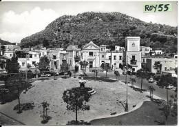 Campania-napoli- Ischia Lacco Ameno Piazza S.restituta Veduta Animata Anni 50/60 - Italie