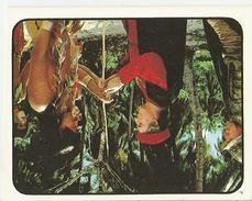 FIGURINE CRISTOFORO COLOMBO N.183 PANINI 1985 - Panini