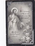 1835 1904 Jozef D'Haens Van De Vyver De Groote Haasdonk Burgemeester Bidprentje Doodsprentje Image Mortuaire - Images Religieuses