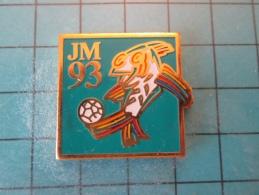 PIN916c Pin´s Pins /   SPORTS : JEUX MEDITERRANEENS 1993 LANGUEDOC ROUSSILLON FOOTBALL    INSCRIPTION AU DOS ,  Voir Pho - Calcio