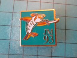 PIN916c Pin´s Pins /   SPORTS : JEUX MEDITERRANEENS 1993 LANGUEDOC ROUSSILLON ESCRIME   INSCRIPTION AU DOS ,  Voir Photo - Scherma
