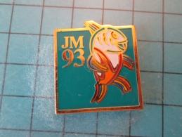 PIN916c Pin´s Pins /   SPORTS : JEUX MEDITERRANEENS 1993 LANGUEDOC ROUSSILLON LUTTE  INSCRIPTION AU DOS ,  Voir Photo N° - Lotta