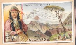 LOT DE 2 CHROMOS -  CHROMO CHOCOLAT SUCHARD + CHROMO Paysage - Suchard