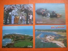 54) Destockage : 4 Cp : Sri Lanka : Beruwala Harbour :galle , 2 Tuskers Raise Their Trunkis Domesticated Elephant - Sri Lanka (Ceylon)