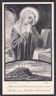 1864 1930 Haesdonck Haasdonk Elisa De Burggrave Carmeliet Doodsprentje Bidprentje Image Mortuaire - Images Religieuses