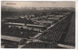 Nr.  7225,  Grüße Vom Truppen-Übungsplatz Lager Lechfeld, Feldpost - Guerre 1914-18