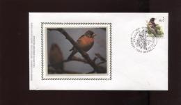 Belgie Andre Buzin Birds FDC SILK Zijde RR 2921 Brussel - 1985-.. Oiseaux (Buzin)