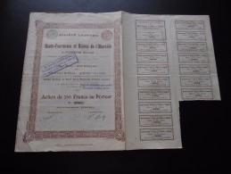 """Action """"S.A Des Hauts Fourneaux Et Usines De L'Olkovaïa à Ouspensk (Donetz) """"Bruxelles 1896 N°05565 - Russie"""