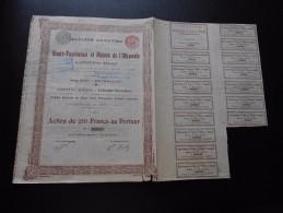 """Action """"S.A Des Hauts Fourneaux Et Usines De L'Olkovaïa à Ouspensk (Donetz) """"Bruxelles 1896 N°05531 - Russie"""