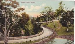 635/ Queens Domain, Hobart, Tasmania - Hobart