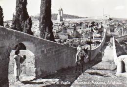 Gravina Di Puglia - Panorama Madonna La Stella (animata) - Otras Ciudades
