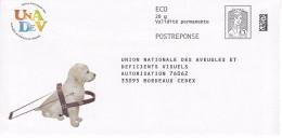 PAP REPONSE CIAPPA ECOPLI.Union National Des Aveugles - Entiers Postaux
