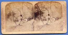 STEREOFOTO 1896 Japan Motiv - The Golden Days Of Autumn In Japan, Stereofoto Auf Karton Fotoverlag Strohmeyer & Nym - Stereoscopic