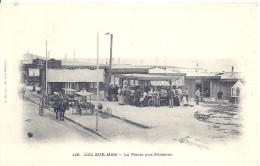 CALVADOS - 14 - 06 - 2016 - LUC SUR MER -la Pierre Aux Poissons - Luc Sur Mer