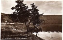 Castel Gondolfo  - Mattino Sul Lago - Agriculteur à Dos D'ane  - Métier - Italië