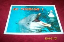 THEMES LES DAUPHINS ° NO PROBLEM  LE 20 08 2002 - Dauphins