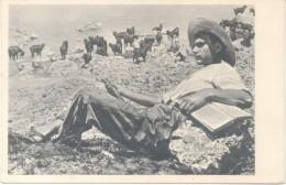 JEWISH SHEPHERD IN GALILEE CPA YEAR 1946 PHOTO: J. BENOR-KALTER EDITEUR S. ADLER HAIFA HADAR HACARMEL PALESTINE ORIGINAL - Palestina