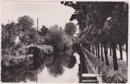 Romilly Sur Seine ,avenue Raspail,edition De Luxe E MIGNON,production Estel,10,AUBE - Romilly-sur-Seine