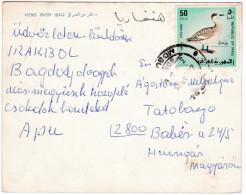 CP1135 Views From Iraq Nice Stamp Mi 526 Bird - Iraq