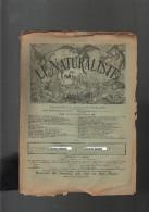 """""""LE NATURALISTE"""" N°108 Du 01/09/1891 Les Morilles, Flore De L'Inde, Faune Tertiaire Patagonie - Ciencia"""