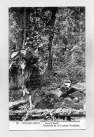 GUADELOUPE - 971 - SAINT CLAUDE - Cascade Vauchelet - Other