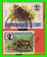 SWAZILAND   ( Suazilandia Africa ) 2 SELLOS AÑO 1969-87 - Swaziland (1968-...)
