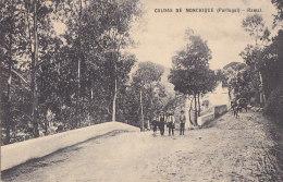 Portugal - Ramal - Caldas De Monchique - Faro
