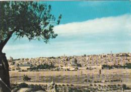 Jordan Panorama Of Jerusalem 1960 - Jordan