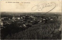LE MESNIL SUR OGER (51) Vue Générale - Très Très Rare - Carte Postée - France