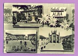 Saluti Da Alba - Cuneo