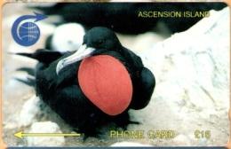 Ascension - 3CASC, GPT, Ascension Frigate Bird, 15 £, 4.000ex, 1992, Used - Ascension