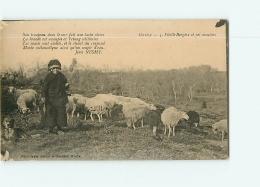 Corrèze : Vieille Bergère Et Ses Moutons. 2 Scans. Edition Bessot - France