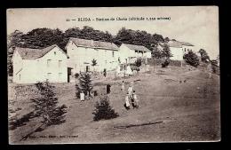 CPA ANCIENNE- AFRIQUE- ALGÉRIE- BLIDA- LA STATION DE CHRÉA A 1550 M D'ALTITUDE- ANIMATION GROS PLAN- - Blida