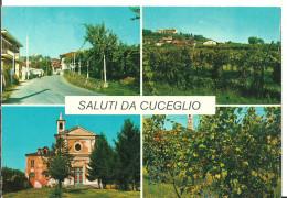Cuceglio (Torino, Piemonte) Vedute Panoramiche E Chiesa Parrocchiale, View And Church - Autres