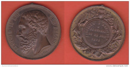 Belgio Leopold II° 1873 Médaille Bronze - Monarchia / Nobiltà