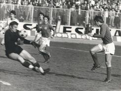 Photography FO000169 - Football (Soccer / Calcio) Dinamo Zagreb (24 X 18cm) - Sports