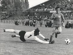 Photography FO000171 - Football (Soccer / Calcio) Dinamo Zagreb (24 X 18cm) - Sporten
