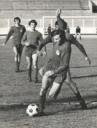 Photography FO000172 - Football (Soccer / Calcio) Dinamo Zagreb (18 X 24cm) - Sports