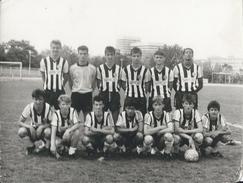 Photography FO000213 - Football (Soccer / Calcio) Partizan Beograd (24 X 18cm) - Sports