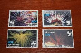 WWF  2005 Micronesia  Marine Life - Marine Life