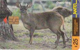 URUGUAY - Animal, Guazu-bira(91a), 11/99, Used - Uruguay
