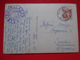 D2-Postcard-Bled Stari Grad-Bled Seals - Slovénie