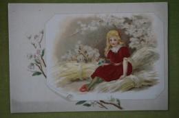 Chromo Gaufrée, Fille Assise Sur La Paille, Bouquet De Fleurs; Habits (robe Rouge) En Tissus Brodé - Unclassified