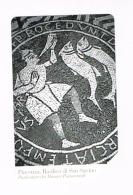 TELECOM ITALIA  - C.&C. F4665 - 26^ PANTHEON 2009: PIACENZA (BASILICA SAN SAVINO, MOSAICI PAVIMENTALI) - USATA (RIF.CP) - Pubbliche Speciali O Commemorative