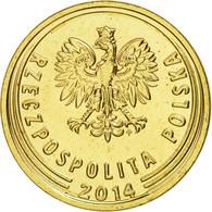 Pologne, 2 Grosze, 2014, Warsaw, SPL, Brass - Pologne