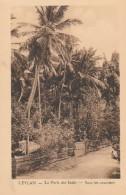 Ceylan La Perle Des Indes Sous Les Cocotiers - Sri Lanka (Ceylon)